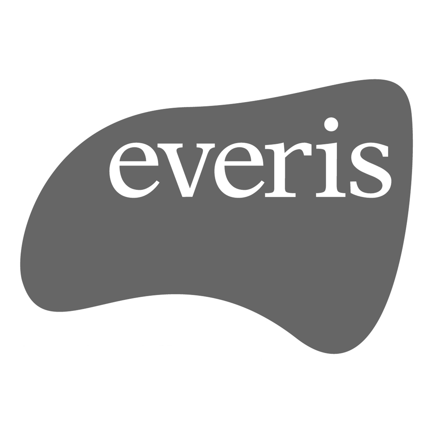 everis byn